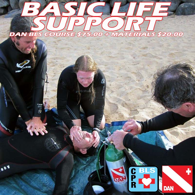 DAN Basic Life Support 07/09/2019