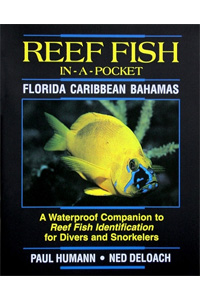 Pocket Fish ID Book